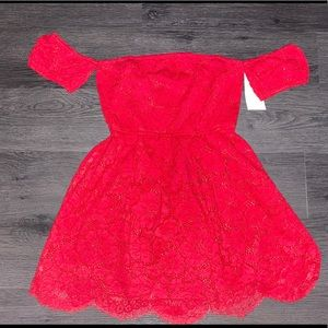 Tobi lace skater dress